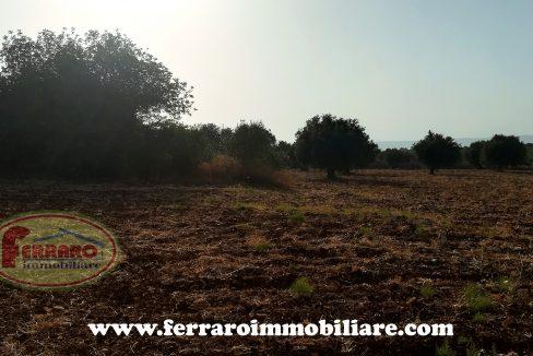 vendita-fabbricato-rurale-terreno-pietra-campagna-scicli-ragusa-casale