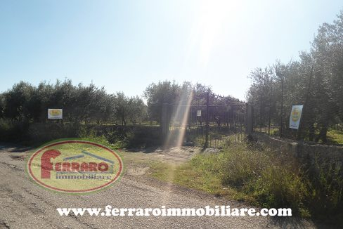 fabbricato-con-terreno-chiaramonte-gulfi-fabbricati-in-vendita-ragusa-sicilia-uliveto-annessi-agricoli